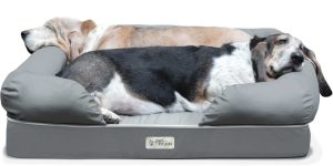 Top 10 Best Pet Beds in 2017