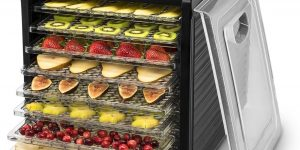 Top 10 Best Food Dehydrators in 2017