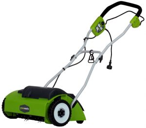 3. GreenWorks 27022