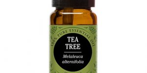 Top 10 Best Tea Tree Oils in 2018