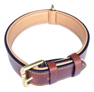 1. Soft Touch Collars, Luxury Real Leather Padded Dog Collar
