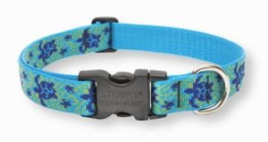 2. LupinePet, Lupine 1-Inch Turtle Reef Adjustable Dog Collar