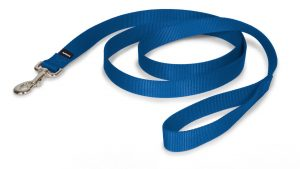 7. PetSafe Leash