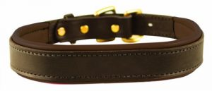 9. Perri's Padded Leather Dog Collar