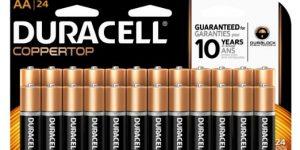 Top 10 Best AA Batteries in 2019