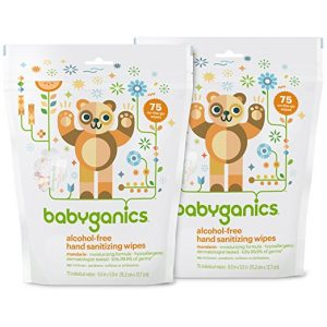 6-babyganics-alcohol-free-hand-sanitizing-wipes