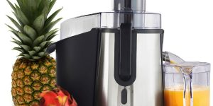 Top 10 Best Juicers in 2020