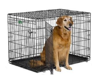 1-midwest-icrate-folding-metal-dog-crate