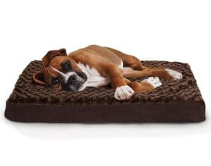 10-furhaven-pet-deluxe-solid-ortho-mat-pet-bed