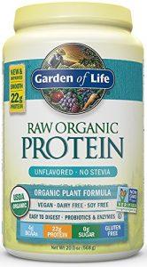 10-garden-of-life-organic-vegan-protein-powder