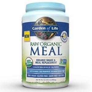 4-garden-of-life-raw-plant-based-protein-powder