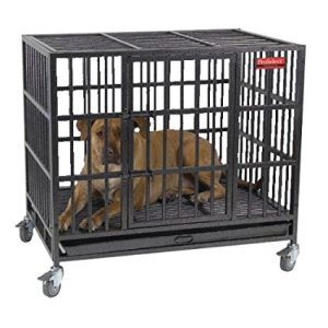 4-pro-select-empire-dog-cage