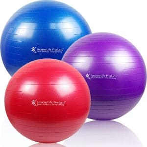 6-smarterlife-products-premium-exercise-ball