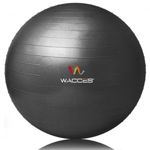 8-wacces-professional-stability-ball