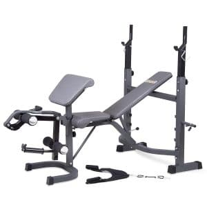 9-body-champ-olympic-weight-bench
