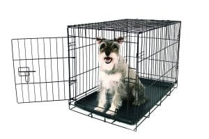 9-carlson-pet-product-single-door-metal-dog-crate