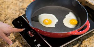 Top 10 Best Induction Cooktops in 2019