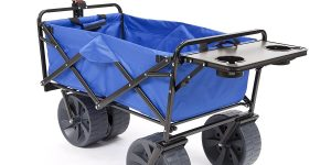Top 10 Best Beach Carts in 2018