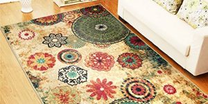 Top 10 Best Indoor Outdoor Rugs in 2018
