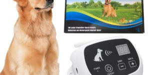 CarePetMost, Wireless Electric Dog Fence System