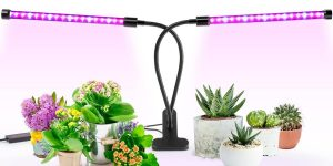 Top 10 Best Indoor LED Grow Lights in 2018