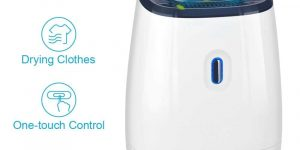 Top 10 Best Mini Dehumidifiers in 2019